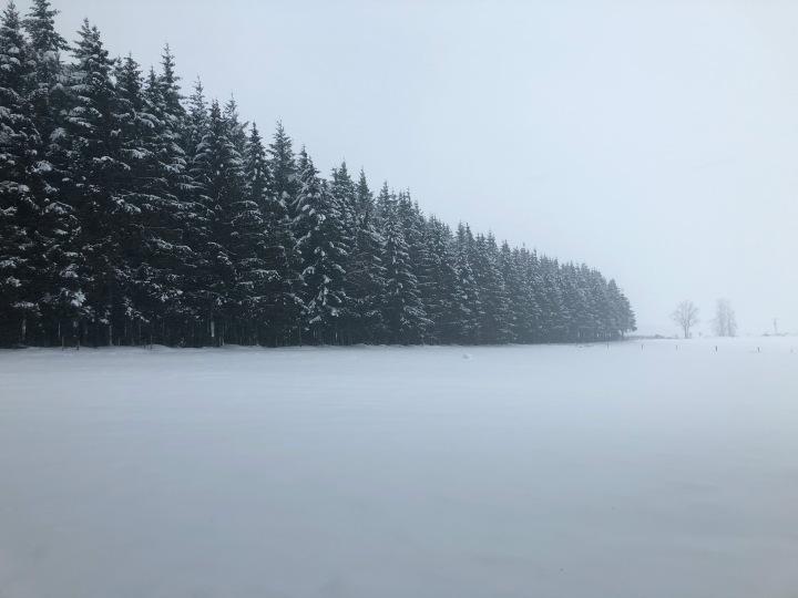 Chasing snow inBelgium